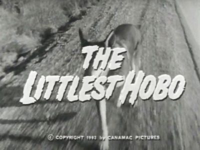 Littlest Hobo 1963.jpg